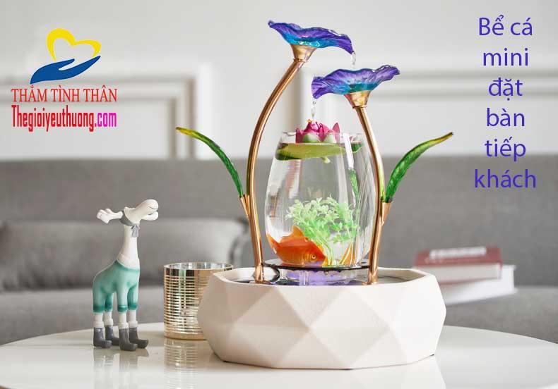 Bể cá thủy sinh mini trang trí bàn tiếp khách