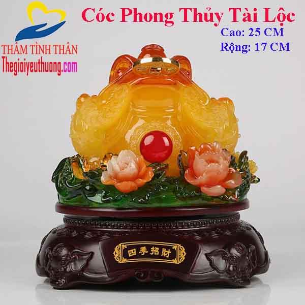 Cóc Phong Thủy Hút Tài Lộc, May Mắn Cho Gia Chủ – Cỡ Trung