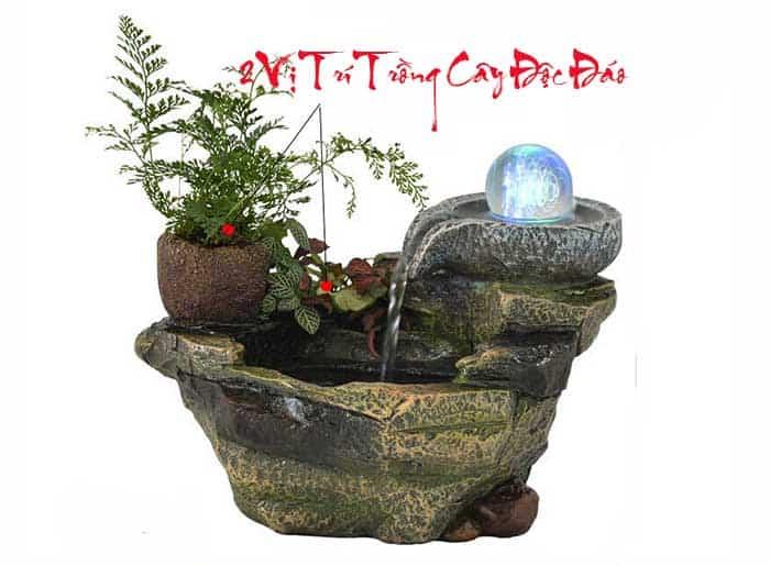 Thiết kế mở, vô cùng thông mini của thác nước bể thủy sinh nhỏ