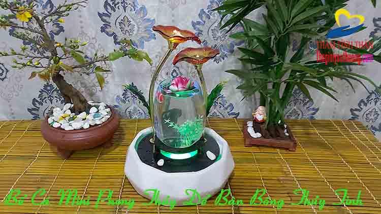 Bể Cá Phong thủy Mini Bông thủy tinh