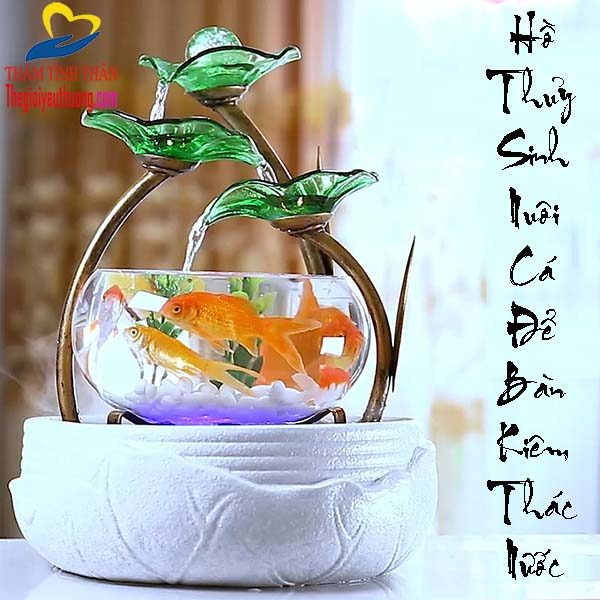 Hồ Thủy Sinh Mini Nuôi Cá Để Bàn - Thác Nước Phong Thủy Độc Đáo