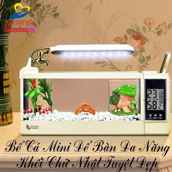 Bể Cá Cảnh Mini Để Bàn Phong Thủy - Khối Chữ Nhật Nhỏ Tuyệt Đẹp
