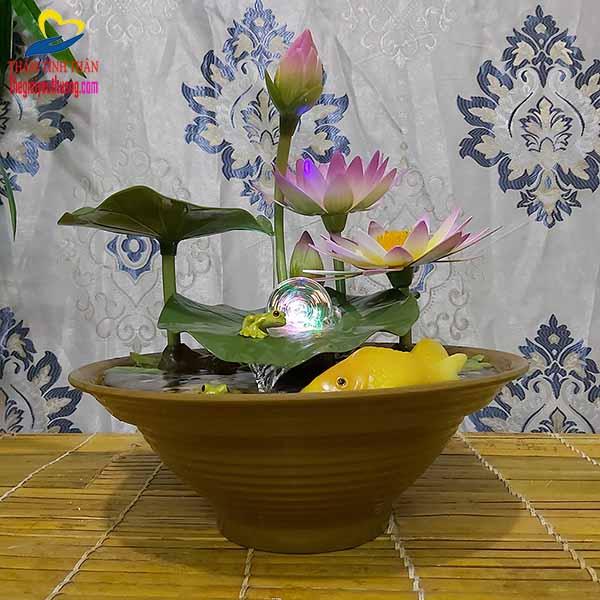 Thác Nước Phong thủy vườn Hoa Súng tuyệt đẹp