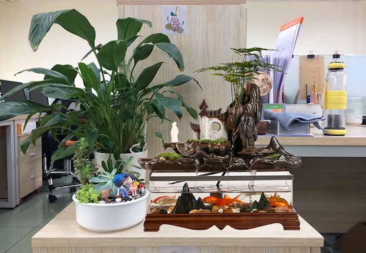 Văn Phòng làm việc Với Bể cá Nhỏ Phong thủy
